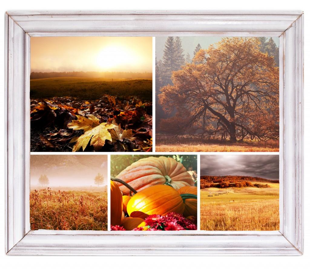 autumn-1024x888