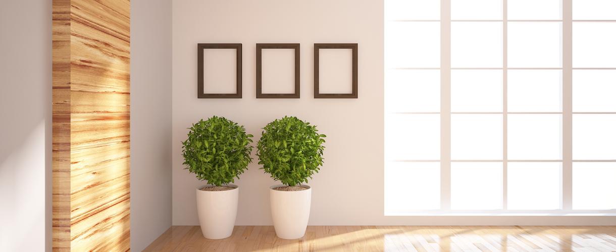 Fresh Framing for Interiors