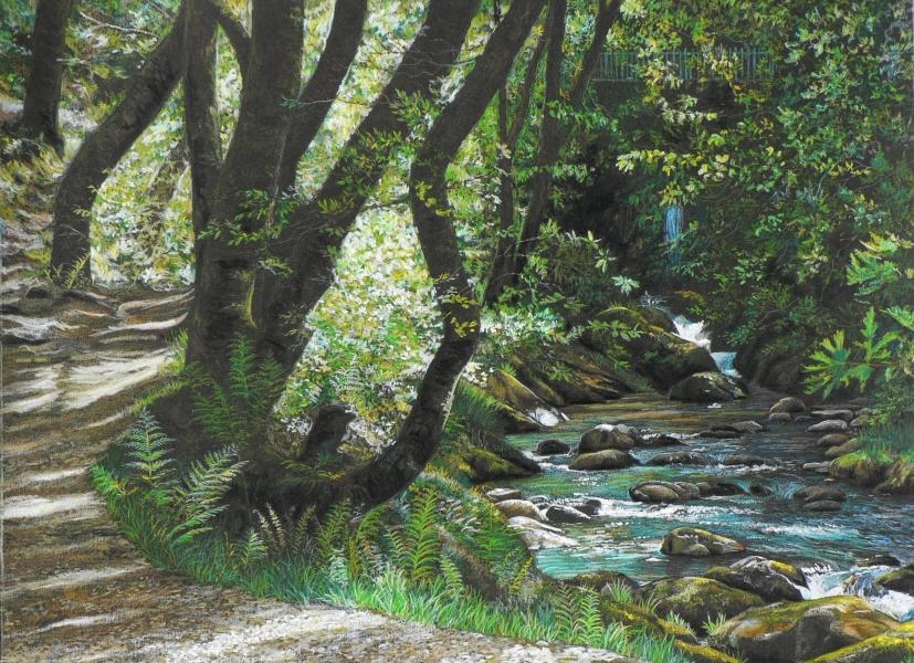 Nant Gwernol, Wales (1)