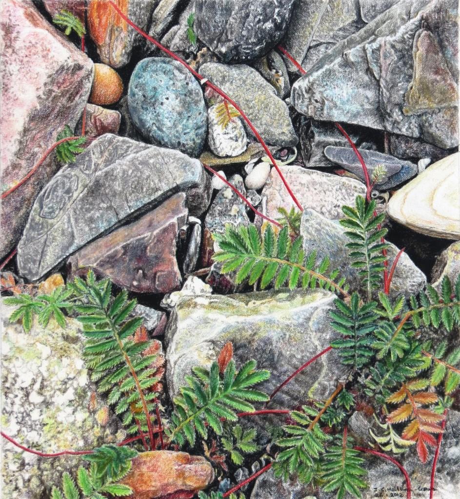 rsz_lagavulin_on_the_rocks__248_x_27_cm