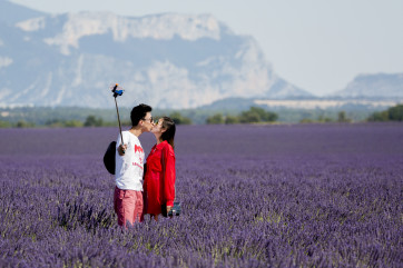 Love amongst the Lavender by Richard Peace