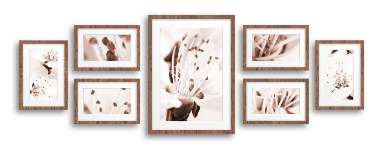 Steps to Collage & MultiPicture Framing