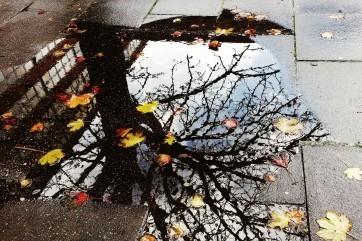 Autumn by Philip Hugo Wurlitzer