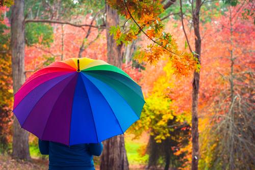 Woman standing under umbrella in autumn park