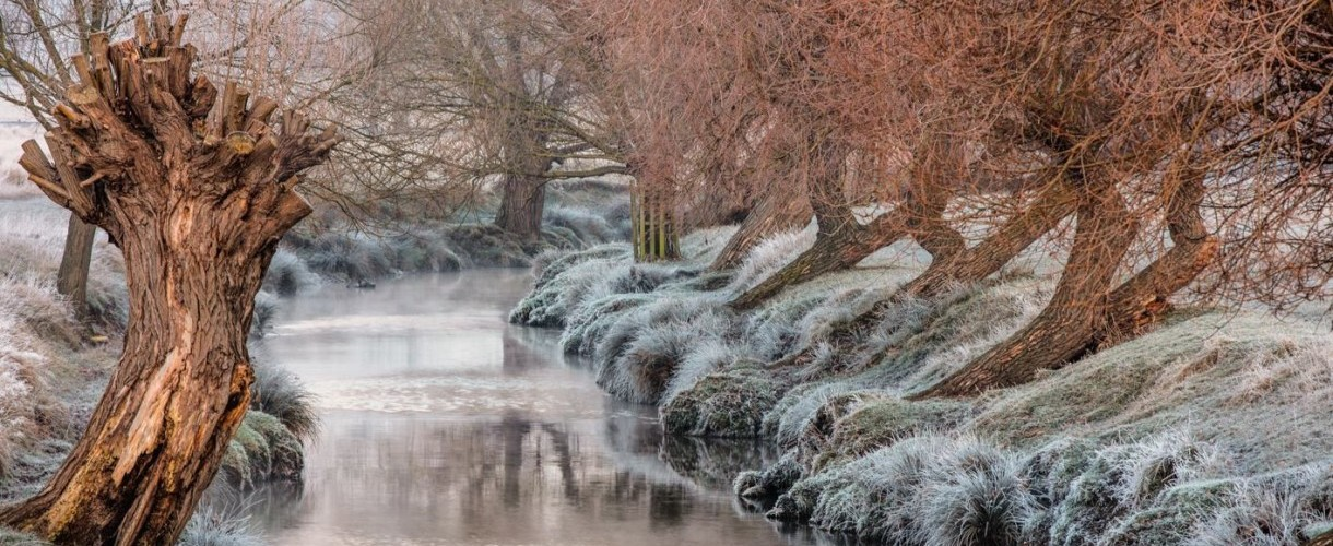 Winner -  'Winter is coming' Photo Competition