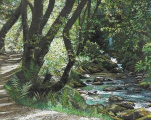 Judith Heilbronn-Crown, Nant Gwernol Waterfalls