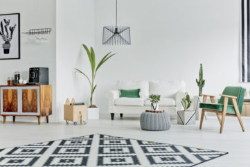 Patterned rug with white sofa, midcentury wooden chair, and house plants