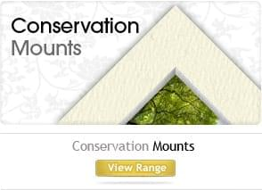 Conservation mounts