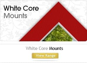White core mounts